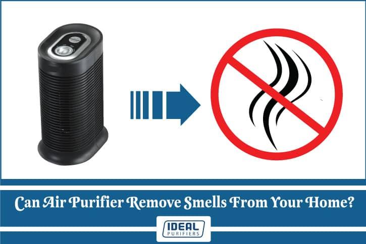 can an air purifier remove smells