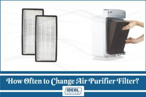 How Often to Change Air Purifier Filter