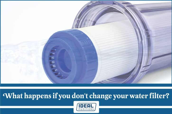 Can you get sick from not changing your water filter
