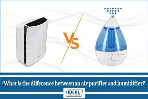 What is the difference between an air purifier and humidifier?