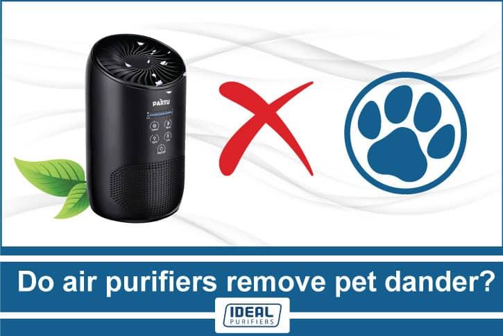 Do air purifiers remove pet dander