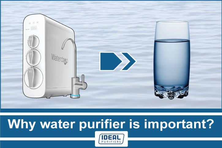 Why water purifier is important