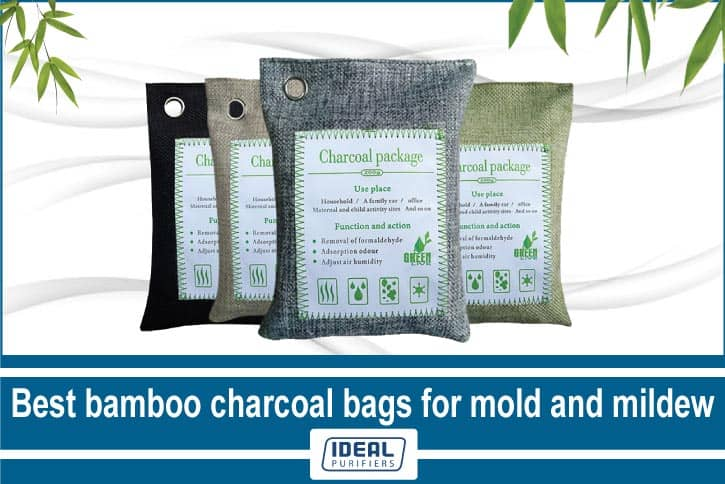 Best bamboo charcoal bags for mold