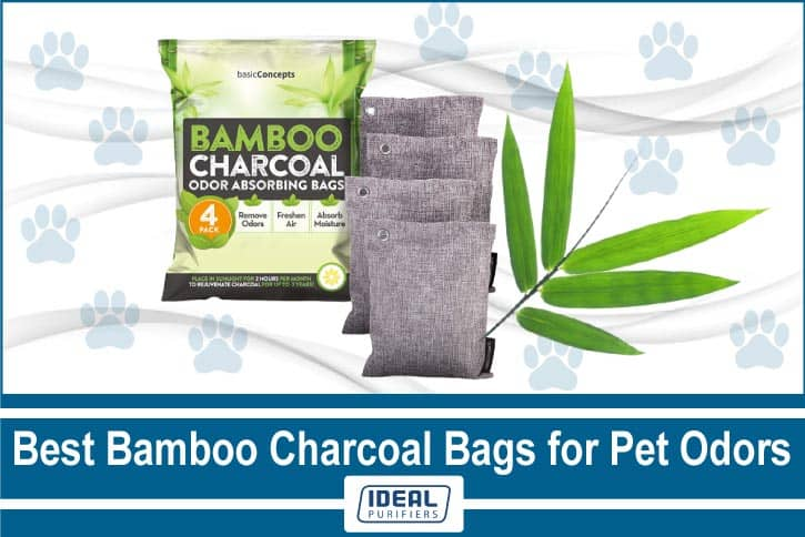 Best Bamboo Charcoal Bags for Pet Odors