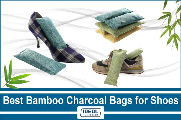 Best Bamboo Charcoal Bags for Shoes