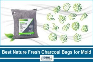 Nature Fresh Charcoal Bags for Mold