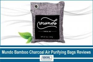 Mundo-Bamboo-Charcoal-Air-Purifying-Bags-Reviews